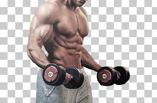 Bodybuilding Fitness Centre Muscle PNG