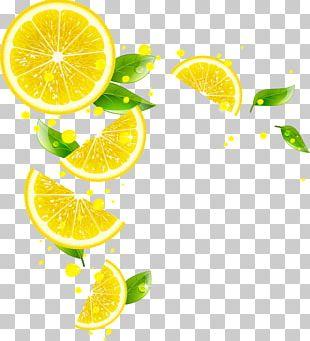 Juice Lemonade Mandarin Orange PNG