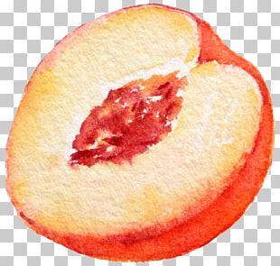 Strawberry Aguas Frescas Cinco De Mayo Party PNG