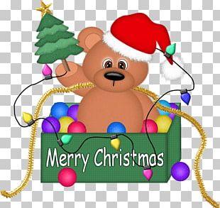 Bear Christmas Santa Claus PNG