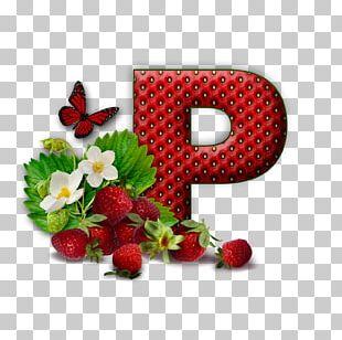 Letter Alphabet Pasta K PNG
