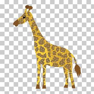 Giraffe Qilin Animal Monkey PNG