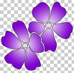 Purple Lavender Beauty And Massage Therapies Lilac Violet PNG