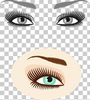 Eyebrow Photography Illustration PNG