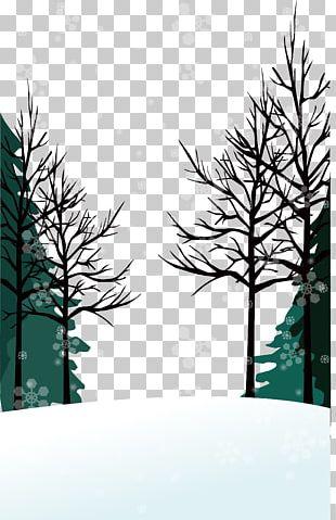 Winter Euclidean PNG