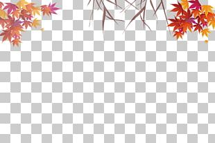 Autumn Leaves Maple Leaf PNG