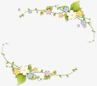 Floral Border Elements PNG
