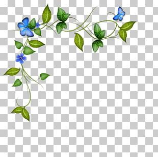 Flower Floral Design Petal Plant Stem Curb PNG