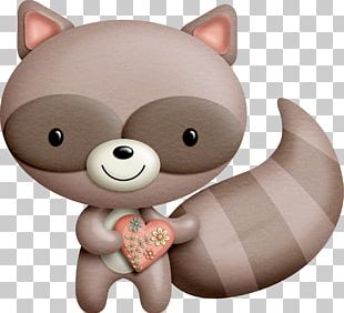 Raccoon Animal PNG