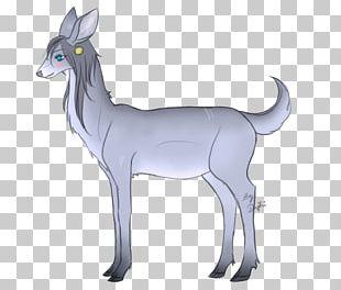 Reindeer Goat Antelope Macropodidae PNG