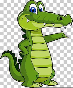 Alligator Crocodile Drawing Cartoon PNG