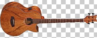 Fender Precision Bass Acoustic Bass Guitar Musical Instruments PNG