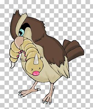 Rooster Owl Horse Beak PNG