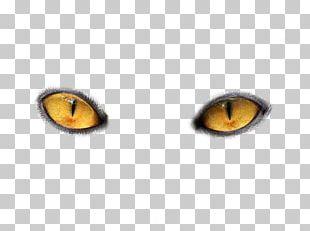 Cat's Eye Light PNG