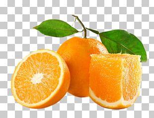 Orange Juice Orange Oil Lemon Squeezer PNG