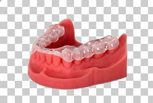3D Printing Dentistry EnvisionTEC Printer PNG
