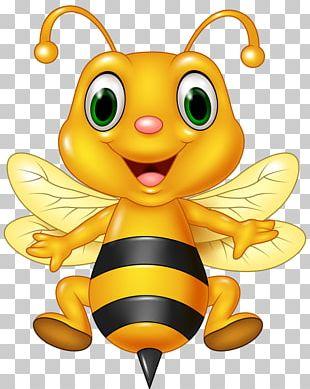Honey Bee Cartoon Illustration PNG