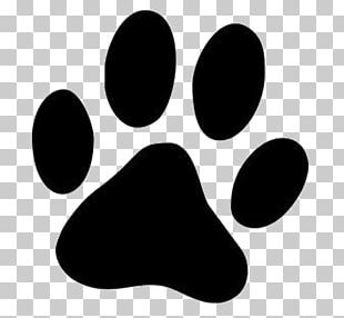 Dog Paw Printing Cat PNG