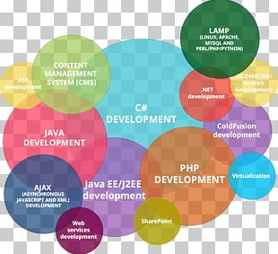 Website Development Information Technology Web Developer Computer Science Programmer PNG
