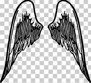 Buffalo Wing Cherub PNG