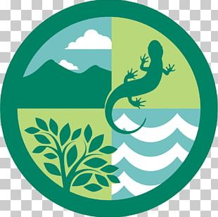 Ecosystem Forest Ecology Logo Natural Environment PNG