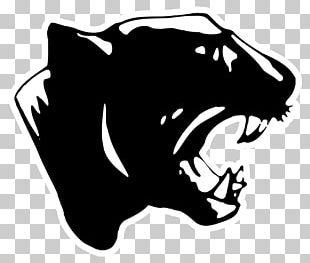 Carolina Panthers Pittsburgh Panthers Football Black Panther Sports Los Angeles Rams PNG