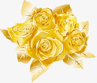 Hand-painted Golden Rose PNG