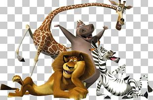 Madagascar Musical Theatre DreamWorks Animation Film PNG