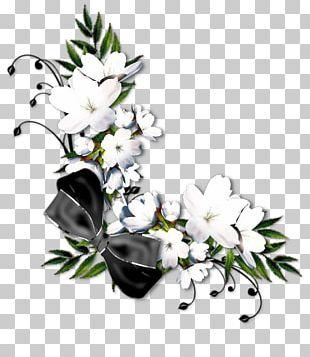 Floral Design Flower White PNG