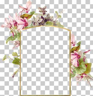 Wedding Invitation Flower Frames Paper PNG