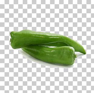 Serrano Pepper Bell Pepper Jalapexf1o Chili Pepper PNG