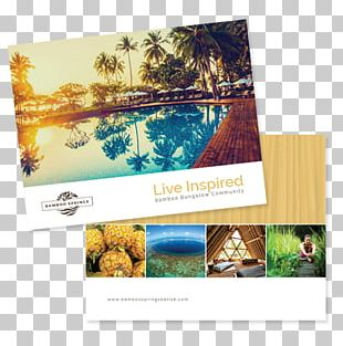 Photographic Paper Advertising Photography Brand PNG