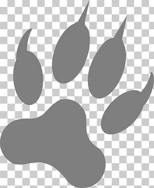 Dog Paw Footprint Claw PNG