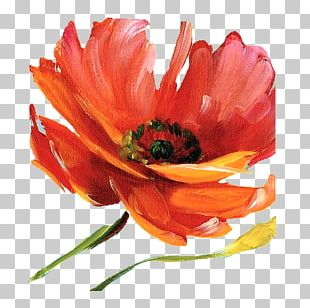 Canvas Art Watercolor Painting Printing PNG