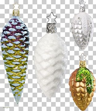 Christmas Ornament Conifer Cone Pine PNG