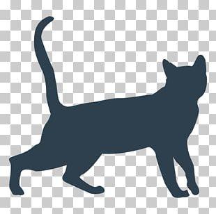 Black Cat Domestic Short-haired Cat Persian Cat British Shorthair Dog PNG