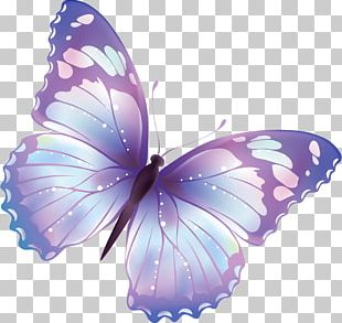 Butterfly Pixel PNG