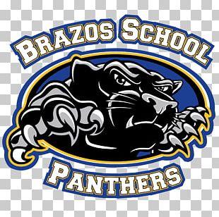 Palmyra Logo Organization Brand Carolina Panthers PNG