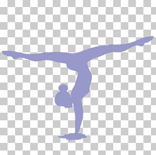 Artistic Gymnastics Split Sport Rhythmic Gymnastics PNG