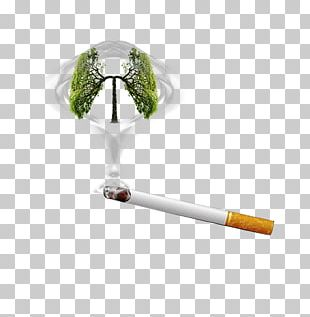Smoking Cessation Smoking Ban Cigarette PNG