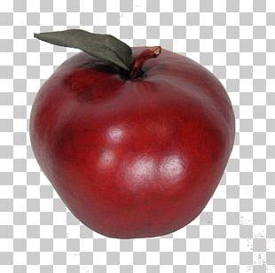 Bush Tomato Barbados Cherry Cranberry Accessory Fruit PNG