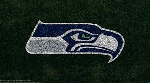 Seattle Seahawks NFL New York Jets Super Bowl XLIX PNG