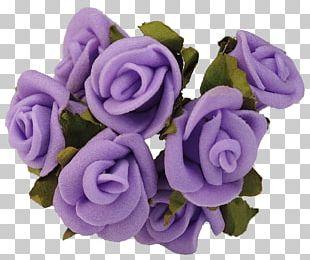 Purple Rose Lavender Flower Violet PNG