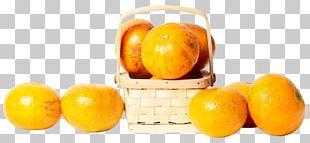 Clementine Mandarin Orange Tangerine Tangelo Lemon PNG
