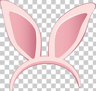 Easter Bunny Hare Rabbit PNG