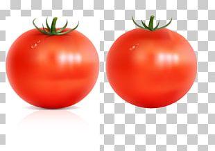 Food Vegetable Fruit Plum Tomato PNG