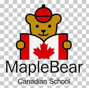 Maple Bear Canadian Preschool Pre-school Education National Secondary School PNG