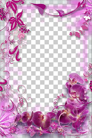 Flower Purple PNG