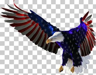 Bald Eagle Flag Of The United States Decal PNG