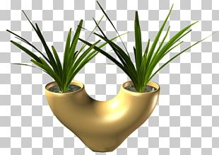 Flowerpot Grasses INAV DBX MSCI AC WORLD SF Agave PNG